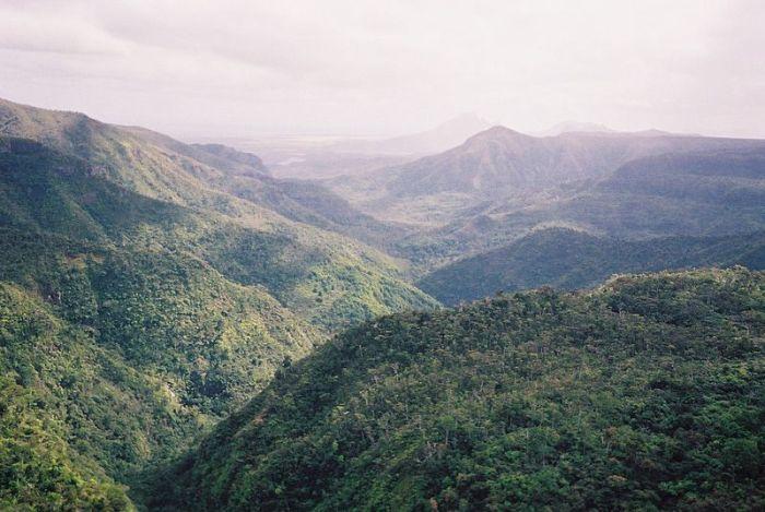 Image Source:WikiPedia