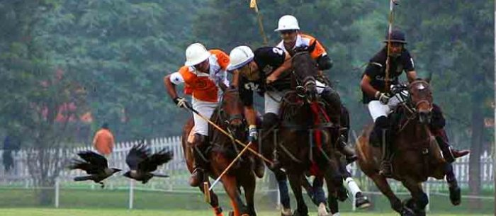 polo in Jaipur