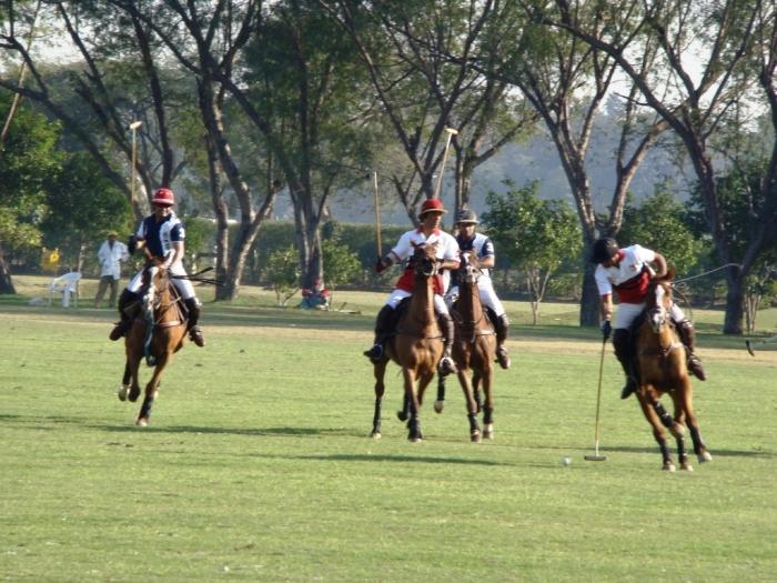 Polo Jaipur