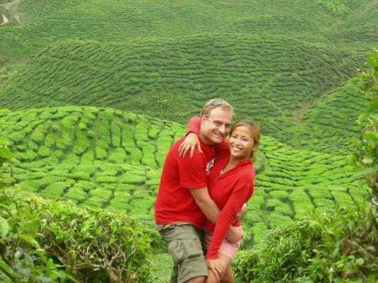 cameron-highland-tea-plantation-cameron-highlands-malaysia
